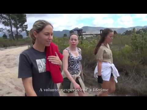 Panthera Africa Volunteer Experience