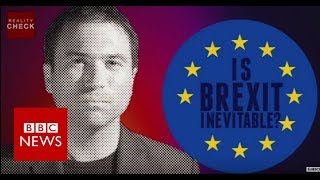 Reality Check: Is Brexit inevitable? -  BBC News
