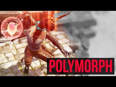 Divinity  Necro Polymorph Build