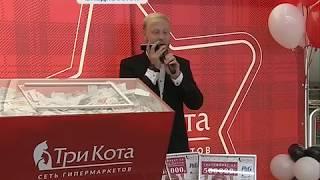 Полмиллиона рублей и другие призы нашли своих обладателей - сеть гипермаркетов «Три Кота»