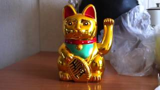 Lucky charm Chinese cat.