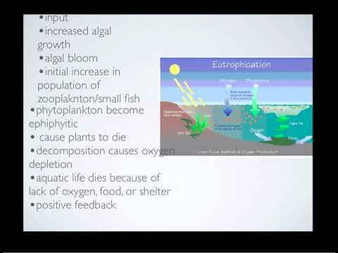 ess topic 5 eutrophication The gulf of mexico dead zone is an area of hypoxic nutrient overloading and algal blooms lead to eutrophication click to see 5 more topics of interest.