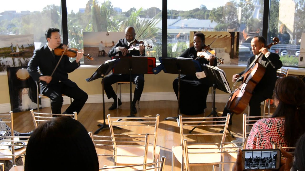 With Or Without You U2 String Quartet Cover The Ocdamia Strings
