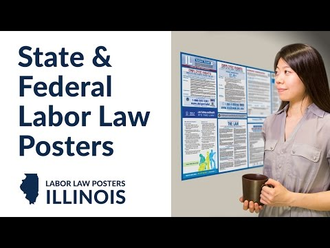 Illinois State and Federal Labor Law Poster Video