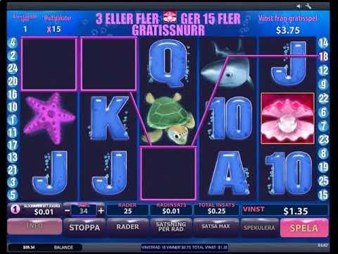 cs go казино бесплатные коинсы