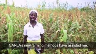 Kernel by Kernel: Building Resilience in Rural Malawi