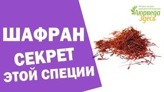 видео В какие блюда добавляют шафран — что это за приправа, для чего используют