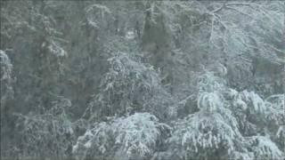 Nadadora - Escoita, a neve cae arredor