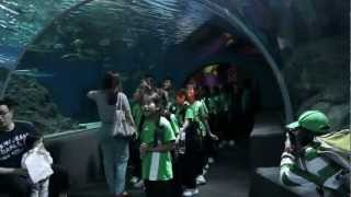 Thai Tims visit Siam Ocean World