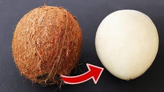 How To  Remove COCONUT Flesh From Shell  2 Different Ways