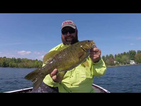 HOW TO CATCH BIG SMALLMOUTH Under Tough Conditions In MAINE
