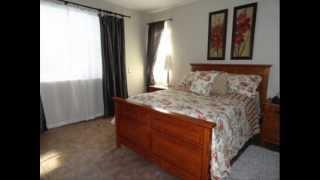 Charleston Chirp 4 Piece Quilt Set ; Spice Stripe Quilt, Quilt Sets King Sale