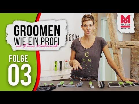 Groomen wie ein Profi mit Franziska Knabenreich & MOSER-  E03