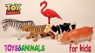 Какие животные похожи на ТИГРА КОРОВУ ФЛАМИНГО ЗЕБРУ СВИНЬЮ КОЗУ ОВЦУ КОШКУ Учим НАЗВАНИЯ животных