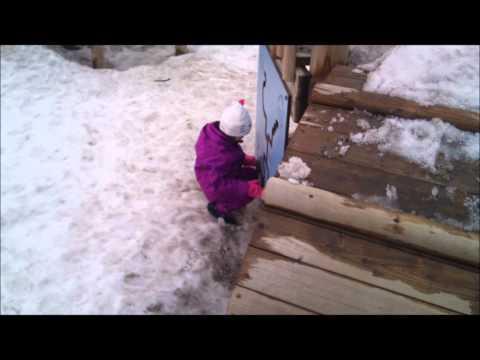 Steinar Halvorsen Engler i sneen.wmv