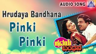 hrudaya bandhana quotpinki pinkiquot audio song ambareeshsudharani akash audio