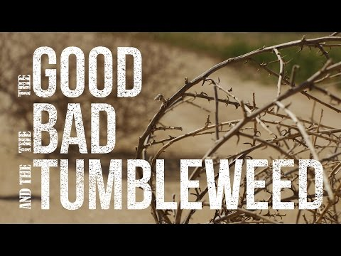 The Good, The Bad And The Tumbleweed