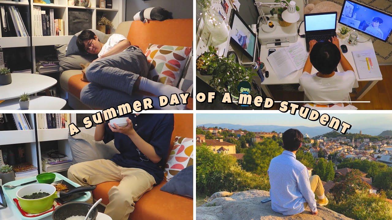 A summer day of a medical student // học bài, nấu cơm, dự lễ hội Kapana và xem phim với mèo