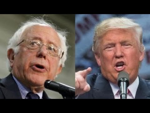 did bernie sanders have a better chance at defeating trump than