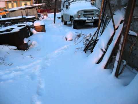 Погода  в Змеиногорске Алтайского края 27.10.2014г