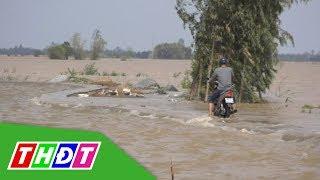 Huyện Hồng Ngự: Nước dâng cao chia cắt nhiều nhà dân | THDT
