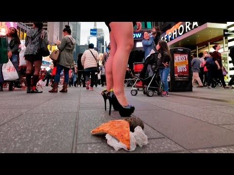 Pizza Rat Robot Terrifies New Yorkers