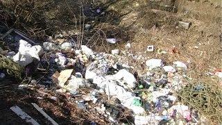 На Косівщині село Космач тоне у смітті