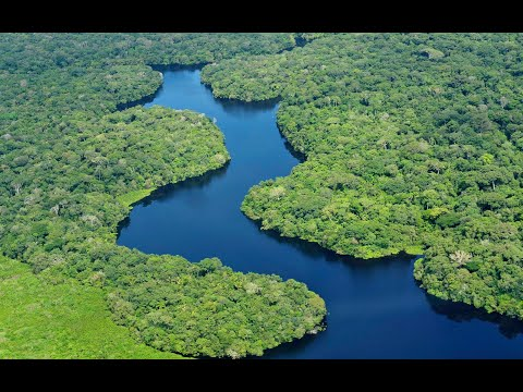 Amazon in 4K  The World's Largest Tropical Rainforest   Aerial Drone   Scenic Relaxation Film