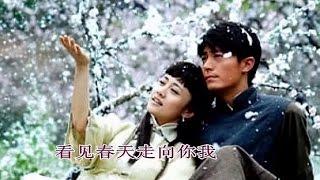 一剪梅 - 刘紫玲 A Spray of Plum Blossoms - Liu Ziling Mp3