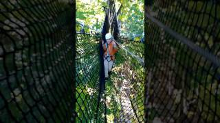 Treetop trekking - 18