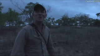 safariLIVE - Sunset Safari - Nov. 11, 2017 thumbnail