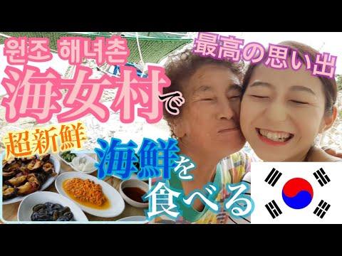 【韓国旅行】目の前でさばく!超新鮮、海鮮!海女村で贅沢にウニ・サザエ・ホヤ・ナマコとキンパを食べる【モッパン 】
