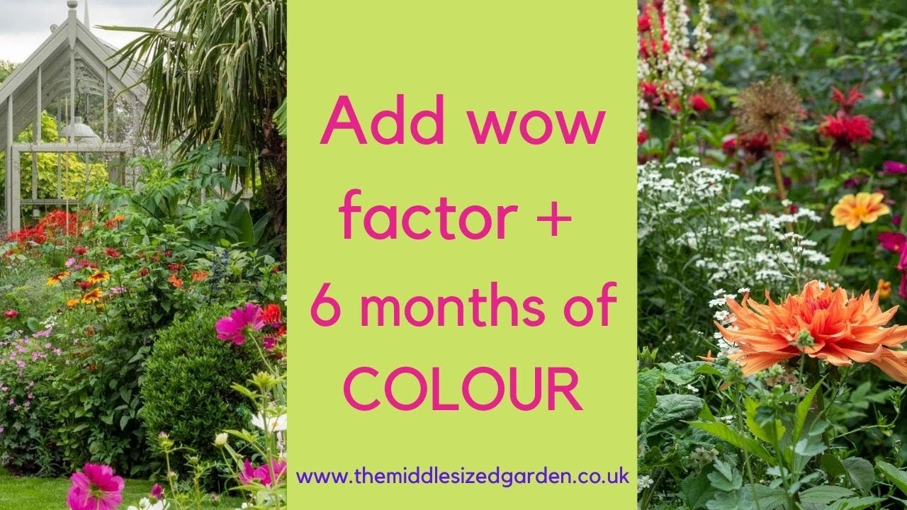 How to make a flower border look amazing