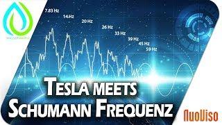 Tesla meets Schumann Frequenz - Im Gespräch mit Peer Zebergs und Arthur Tränkle