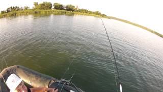 Perch fishing in Ukraine