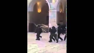 الكيان الصهيوني يقتحم  المسجد الأقصى و تنزيل كبير لجنود الاحتلال تمهيدا لشئ