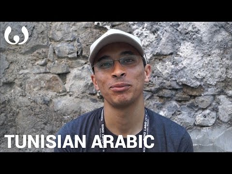 WIKITONGUES: Mounir speaking Tunisian Arabic