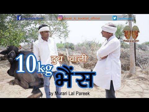 दस किलो दुध वाली भैंस 10kg Milk of Buffalo Comedy by Murari Lal Pareek