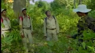 nepali movie BAR PIPAL- 1
