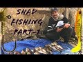 Shad Fishing Part-1