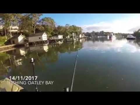 Fishing Oatley Bay 14/11/2017