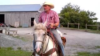 Maple Crescent Farm Campbellcroft horseback riding