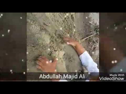 Abdullah Majid Ali
