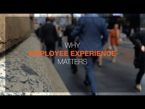 Why Employee Experience Matters