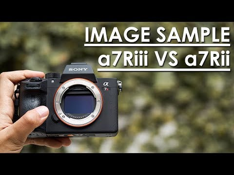 REVIEW SONY A7R mark iii dengan IMAGE SAMPLE | Bahasa Indonesia