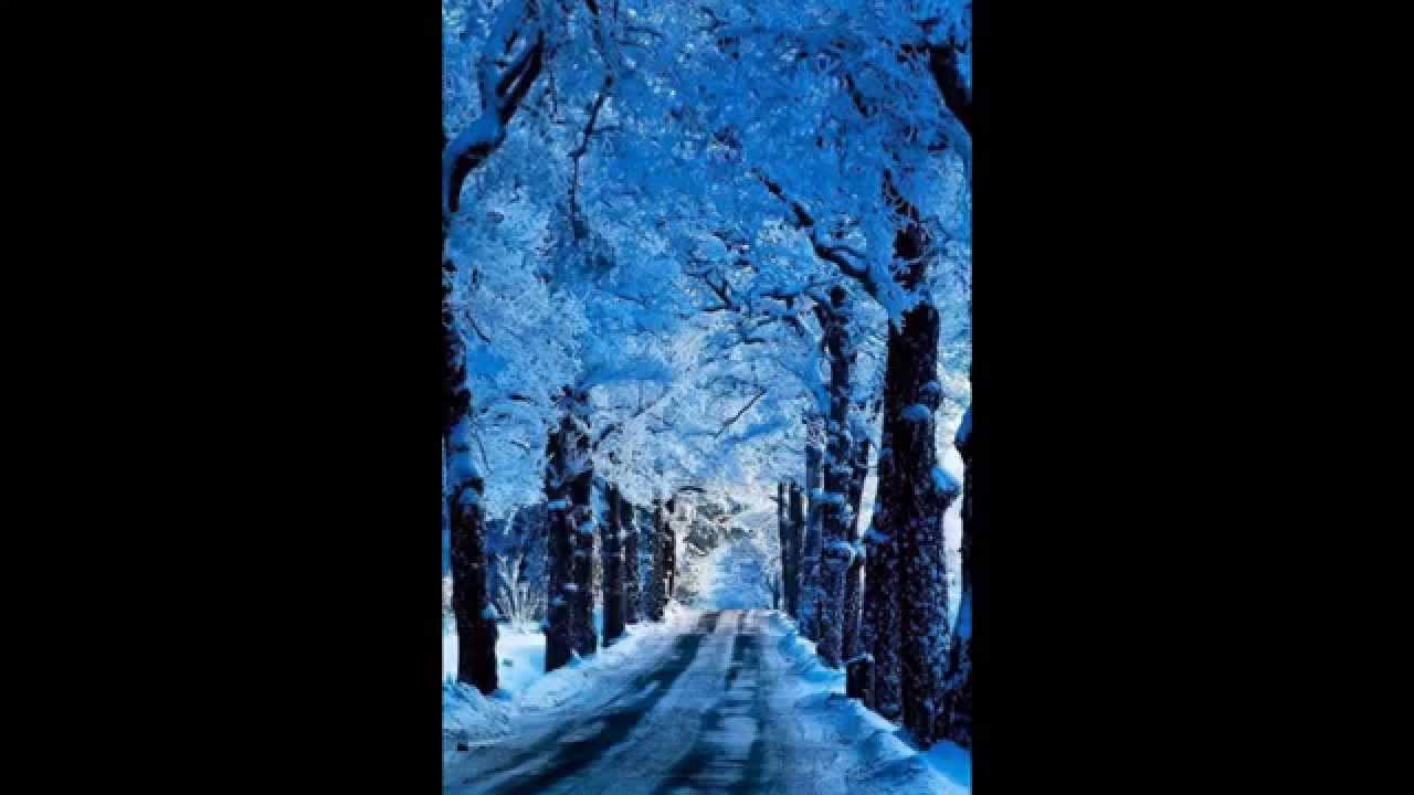 Beautiful nature / Красивая природа / ლამაზი ბუნება