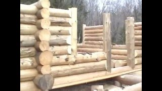 The Adirondack Lean-to Company: Building A Log Cabin