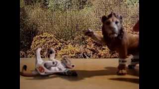 Figurki lwy - Schleich, rodzinka