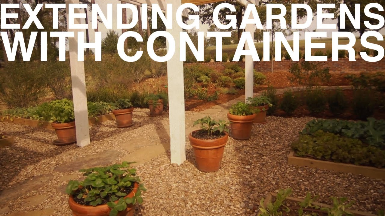 Extending Gardens With Containers | The Garden Home Challenge With P ...