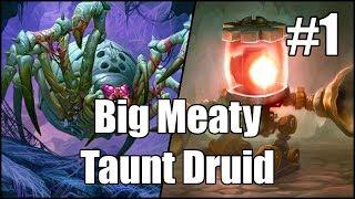 [Hearthstone] Big Meaty Taunt Druid (Part 1)
